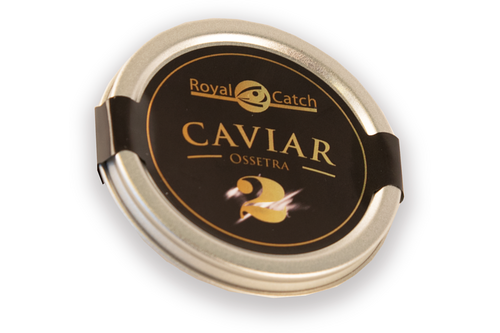 Caviar ossetra royal catch nr. 2 - 30gr